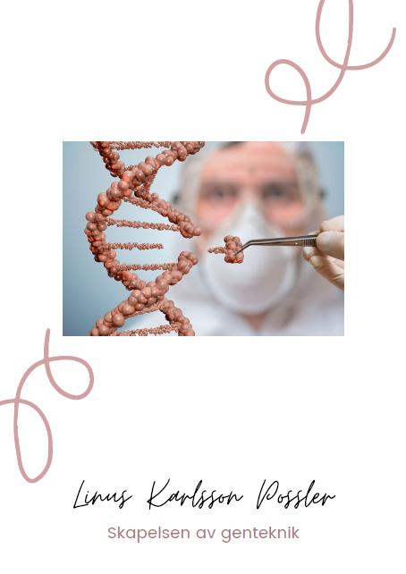 Skapelsen av genteknik